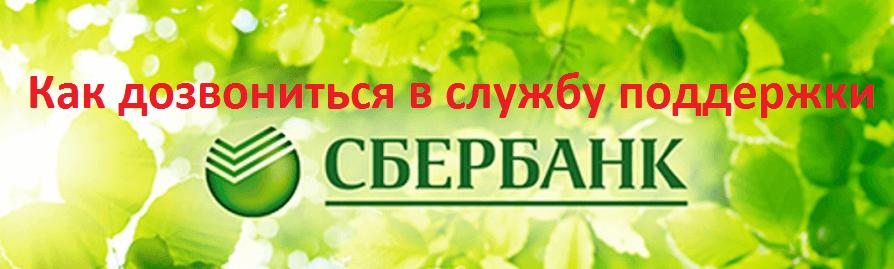 Телефон бесплатной горячей линии Сбербанка